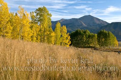 K_Krill_20110922-DSC09892