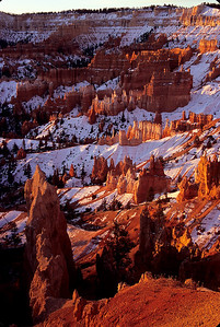 Bryce Canyon at sunrise after a snowstorm