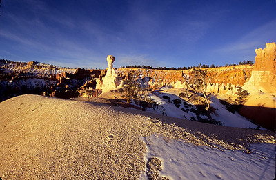 White Hoodoo in Bryce Canyon National Park