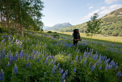 Backpacking 20 minutes from the truck for photgraphing flowers